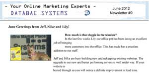 Databae Systems Online Marketing Newsletter